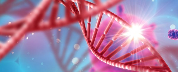 Epigenetic Programs